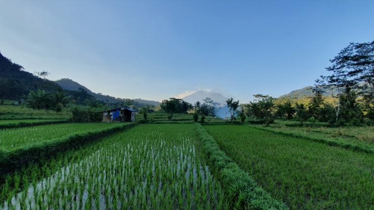 Bali itinéraire Sidemen